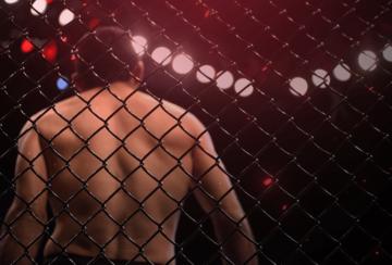 Как делать ставки на бои UFC