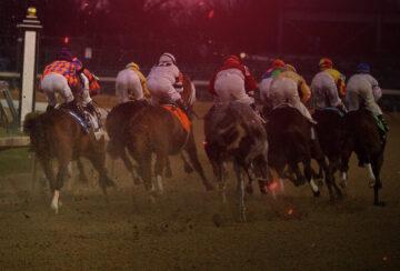Ставки на лошадей 101: Определяющее руководство по основам скачек